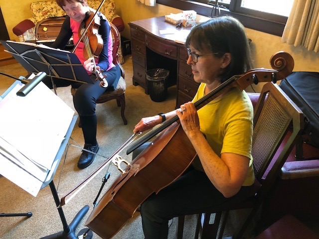 Sabina Strings cellist